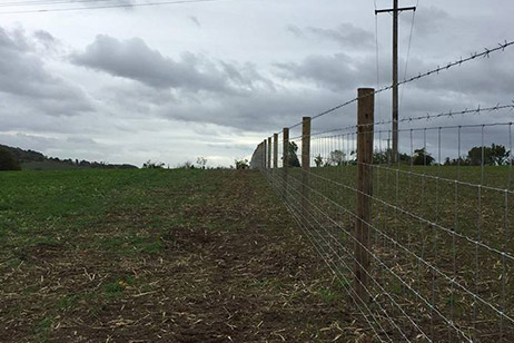 agricultural fencing for livestock field fencing