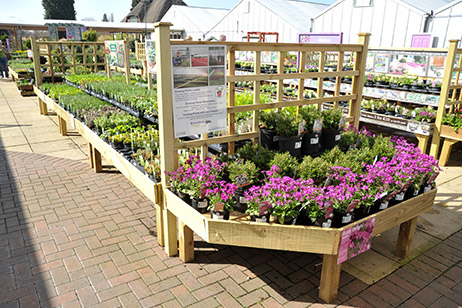 retail plant timber merchandising units at Webbs Garden Centre