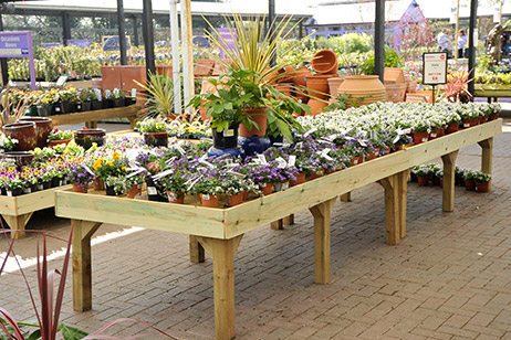 retail timber merchandising units at Webbs Garden Centre